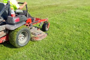 Jakie prace wykonam profesjonalnym traktorkiem ogrodowym